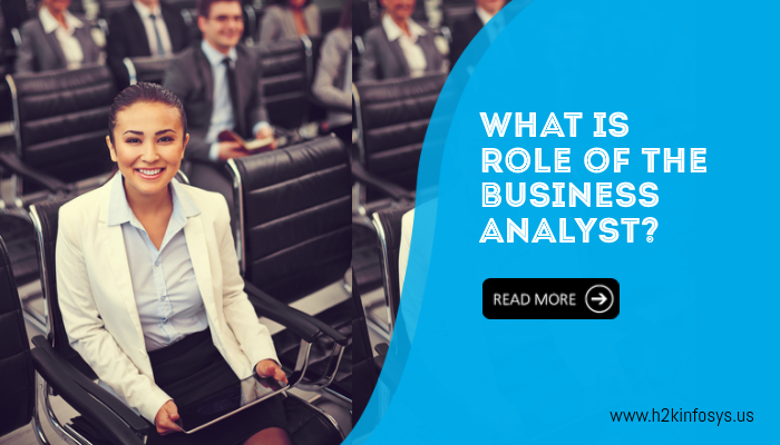 wHAT IS Role of the Business analyst?